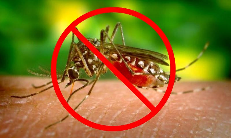 WHO declares Sri Lanka malaria