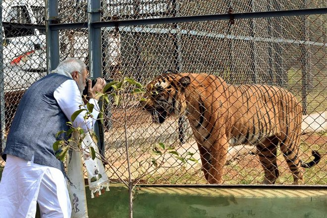"PM Modi turns ""Photographer"" to capture wildlife into his Camera"
