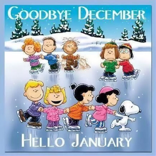 Amazing Welcome January And Goodbye December Quotes Sayings
