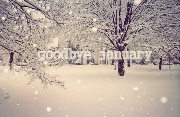 goodbye january welcome february quotes amp images to share