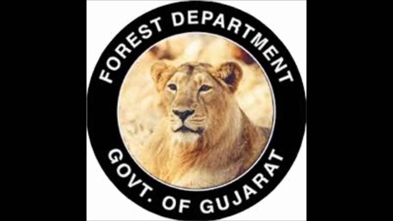 Image result for gujarat forest department logo